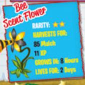 new code flower