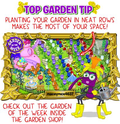 garden_tip_rows