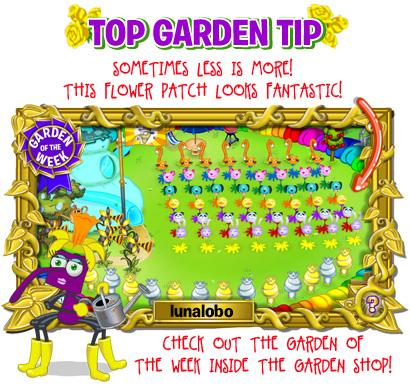 gardentip_16